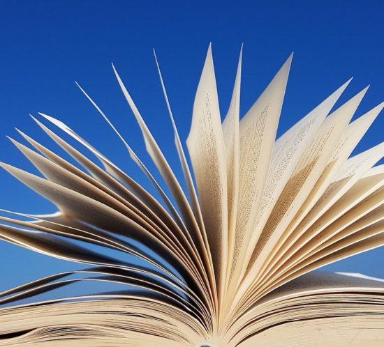 Libri sull'adolescenza per genitori